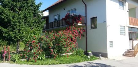 Apartment Mesić
